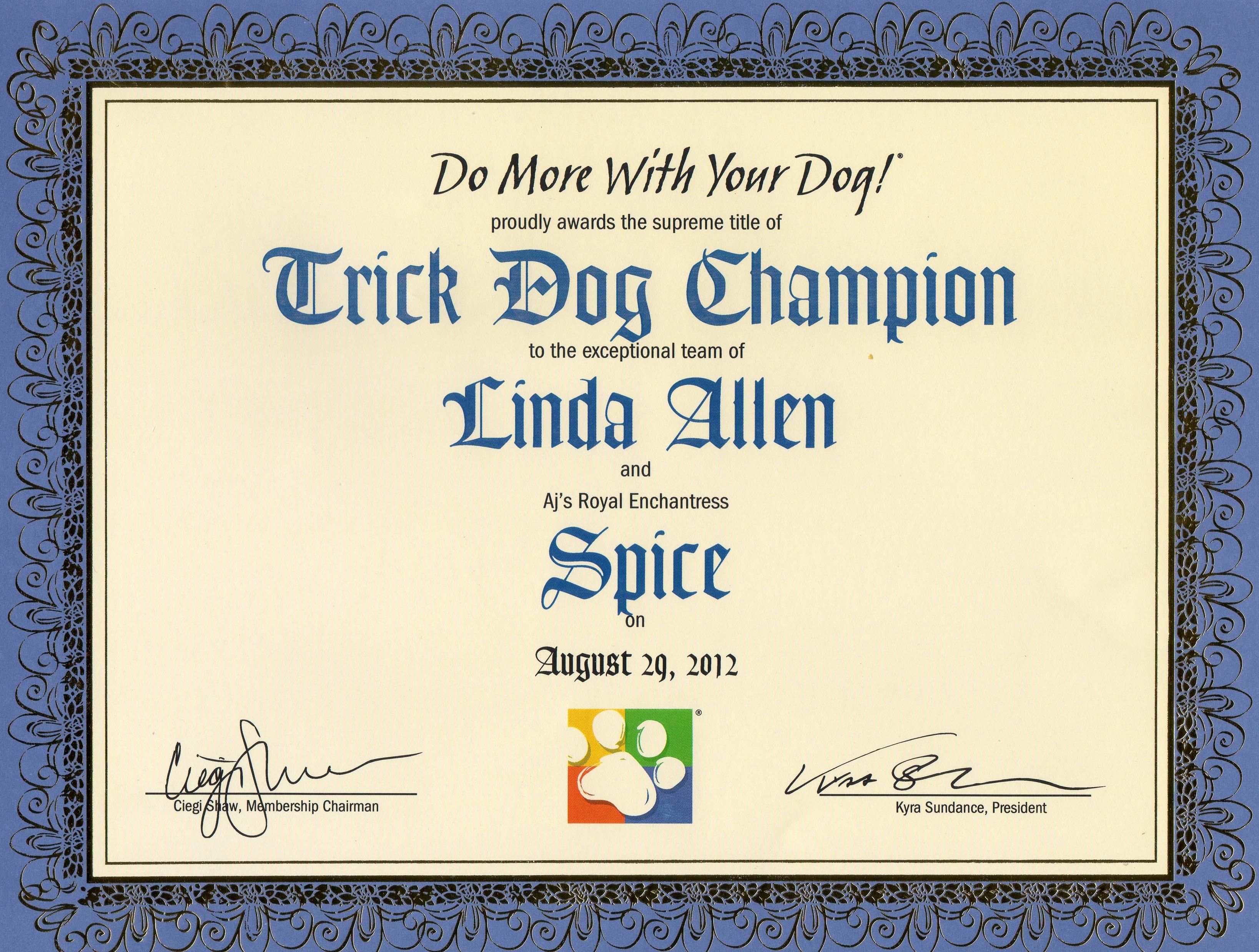 Spice-TDCh